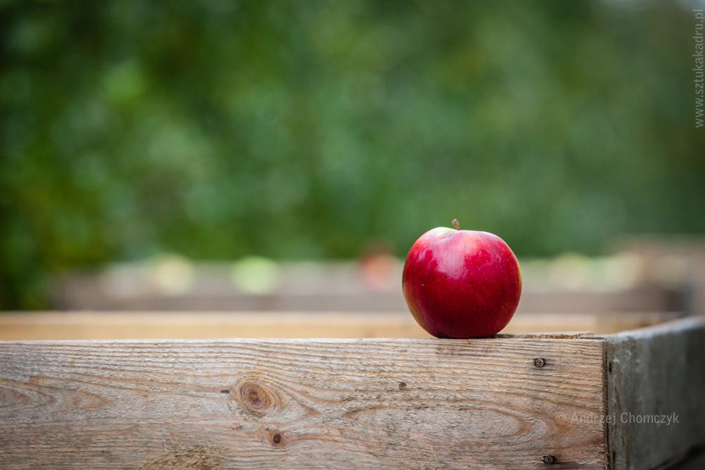 jablka-333